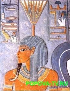 Легенды и мифы о лекарственных растениях