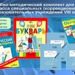 ФГОС для детей с ОВЗ: опыт работы