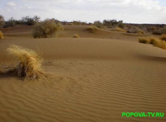 Пустыни России.