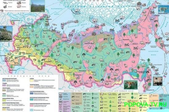 Зона пустынь в России.